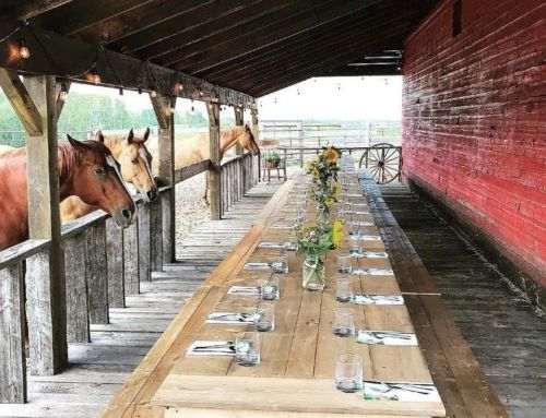 The Old Red Barn Dinners: 2019